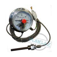 Фото Термометры капиллярные (электроконтактные) ТМП-100С